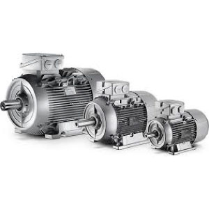 Centrifugal Electric Motor B3
