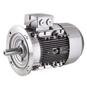 Centrifugal Electric Motor B5