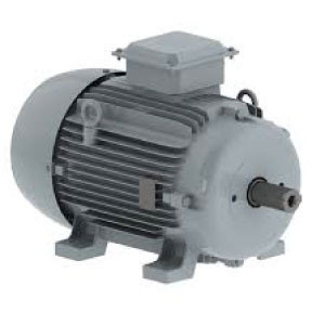 Centrifugal Electric motor W20